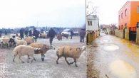 Burası Hassa-Akbez Mahallesi
