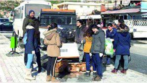 Sokak hayvanlarına gıda desteği …