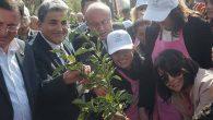 CHP'Lİ kadınlar fidan dikti