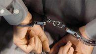 FETÖ'de  2 gözaltı  kaldı