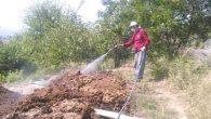 Defne'de sivrisineksiz yaz için mücadele