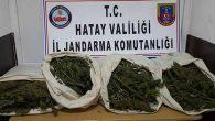 Jandarma, uyuşturucu ele geçirdi