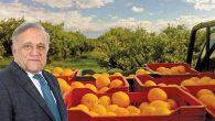 Yaş Meyve ve Sebze