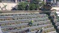 Asi Nehri'nde bakım onarım çalışmaları