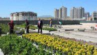 Antakya Belediyesi'nin yeni girişimi: