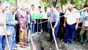 Atatürk Park'ında düzenleme çalışmaları