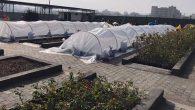 Bitki üretim merkezine  sera takviyesi