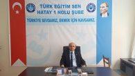 Kamu Sendikası Türk Eğitim Sen'e göre: