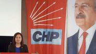 CHP İl Yönetimi'ne seçilen Leyla Sakaroğlu'dan mesaj: