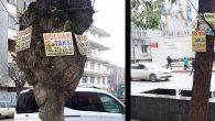 Taksi duraklarını yeniledik…
