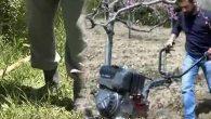 Sağlık Müdürlüğü, bağ-bahçede KENE'ye karşı uyardı