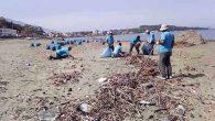 Sahil temizliği başladı