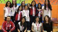 TED'li Satranççılar Grup Şampiyonu