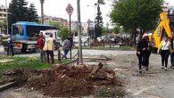 Ulus Meydanı'nda 2 ağaç kestik…