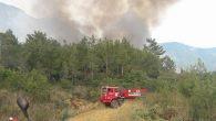 Arsuz-Kale'de orman yangını
