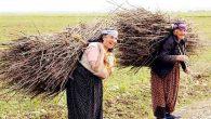 Tarım Üreticisiydik!