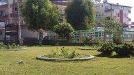 Parkın köşesinde 'Zakkum'