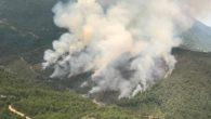 Batıayaz'da Orman Yangını