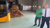 Hassa'da Organik Meyve Fabrikası