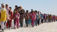 Mülteci Girişimcilik Eğitimleri: