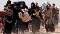 Hatay, İdlib'i izliyor…