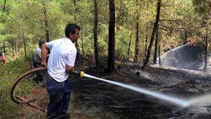 Yayladağı'nda orman yangını
