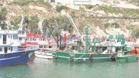 Balıkçılarda av sezonu başladı