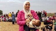 Konumuz 'Mülteciler'