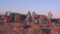 HBB'den Samandağ sahilinde temizlik çalışmaları …