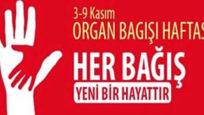 25.995 Kişi Organ Bekliyor