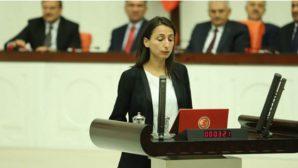 Önerge, Adana Milletvekilinden