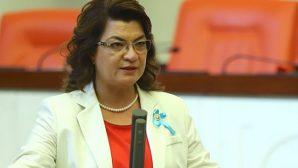 CHP'li Vekil Suzan Şahin yasa teklifi verdi: