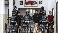 Narkotik Köpekler  Zehir Tacirlerinin  Korkulu Rüyası …