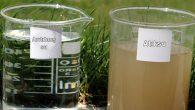 HATSU, Asi'ye temiz su aktarılıyor