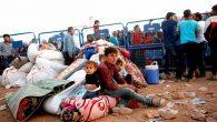 Göçün fıtratında 'kalıcılık' var…