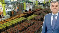 Yaş meyve sebze ihracatı için
