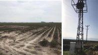 Amik'te pamuk üreticisinin sorunu sürüyor