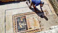 İskelet Mozaiğinde
