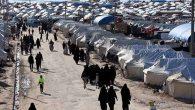 Hatay'ın göçmen hikayesi mi?