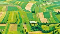 2B ve Hazine Tarım Arazileri Satışı 16 Aralık'a Uzatıldı