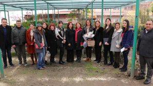 CHP'li Belediyelerden  Kırsal Kalkınma Hamlesi