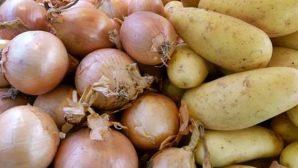 Patates ve Soğan İhracatında Şok Gelişme