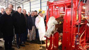 Et ve süt veriminin arttırılması hedefleniyor