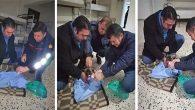 BŞB İtfaiye personeli, yavru köpeğe sahip çıktı…