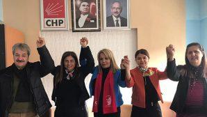 Yayladağı CHP'de Çevik Dönemi