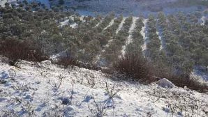 Yayladağı'na  Kar Yağdı
