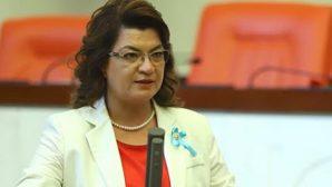 Milletvekili Şahin'den Torba Yasa eleştirisi
