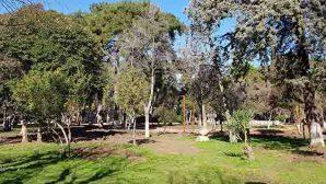 Sosyal Mesafe için… Parklara 'Halkalar'