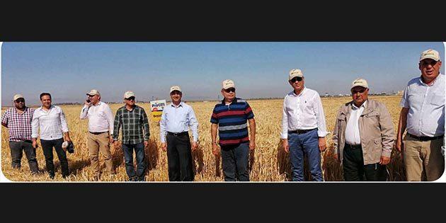 Hatay'ın tarımdaki gururu: