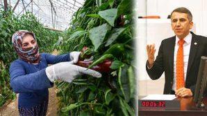Hükümet Bir An Önce Çiftçiyi Desteklemeli